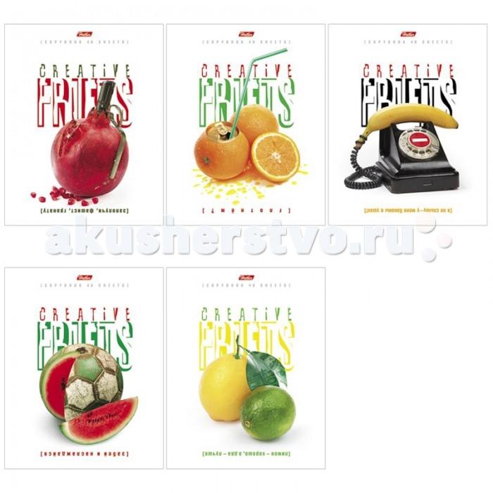 Hatber Тетрадь Креативные фрукты А5 (48 листов)