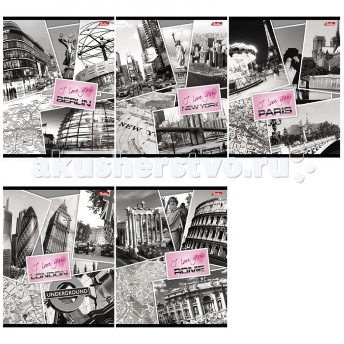 Hatber Тетрадь Любимый город А5 (48 листов)