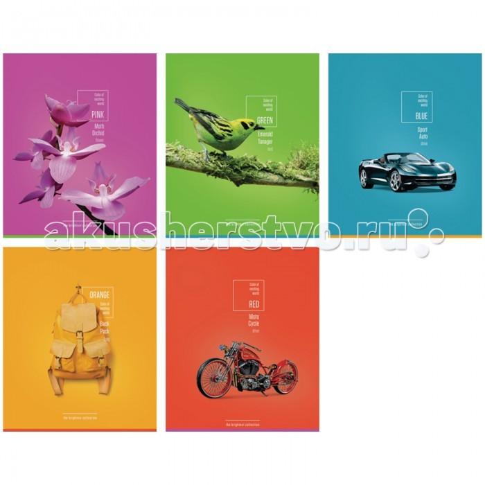 Спейс Тетрадь А5 клетка Стиль Яркая коллекция конгрев выборочный уф-лак (48 листов)