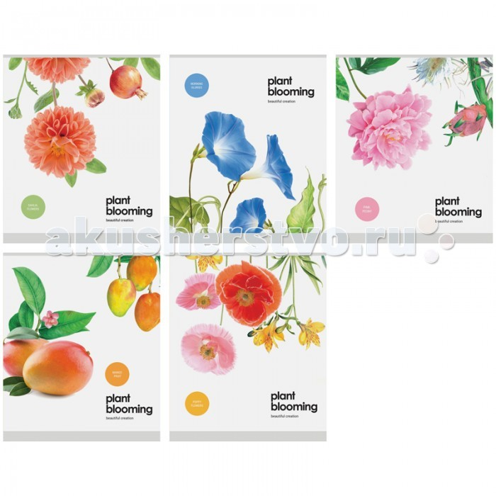 Спейс Тетрадь А5 клетка Цветы Plant blooming конгрев выборочный уф-лак (48 листов)
