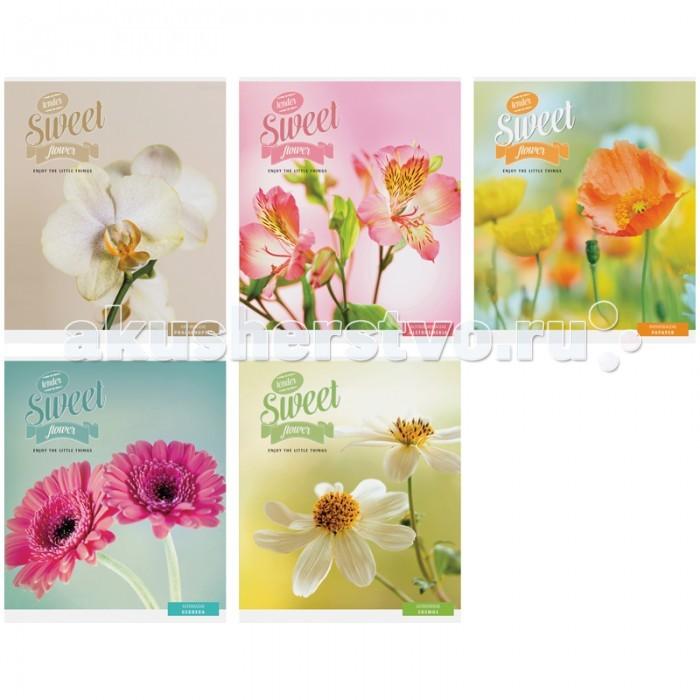 Спейс Тетрадь А5 клетка Цветы Sweet flower выборочный уф-лак (48 листов)