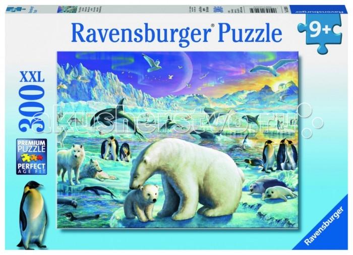 Ravensburger ���� �������� �������� XXL 300 ���������