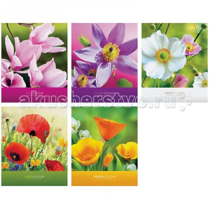 Спейс Тетрадь А5 клетка Цветы Яркие цветы глянцевый УФ-лак (48 листов)