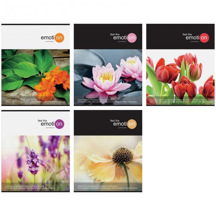 Спейс Тетрадь А5 линия Цветы Emotion flowers (48 листов)