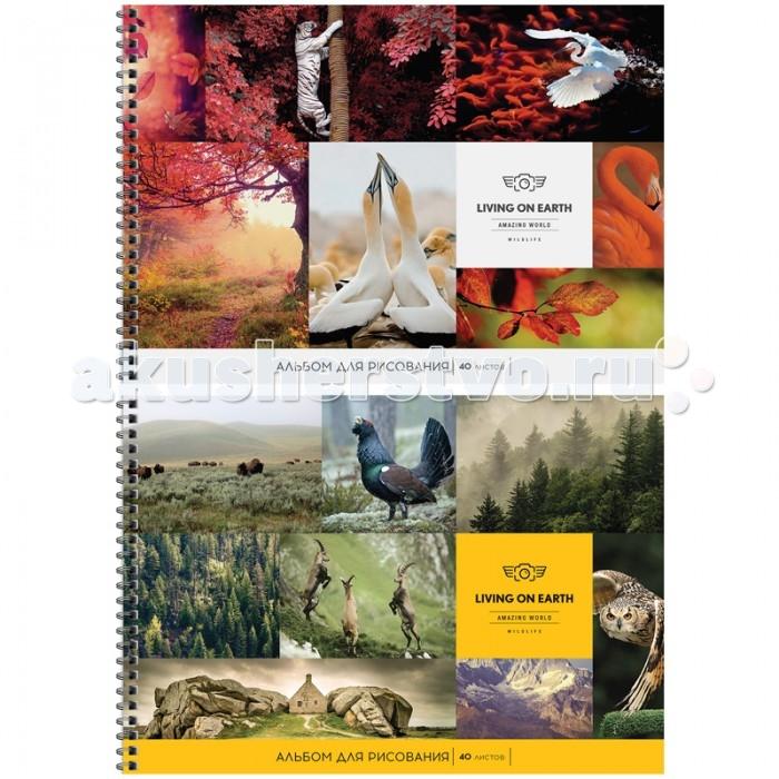 Спейс Альбом для рисования Природа Living on earth 40 листов