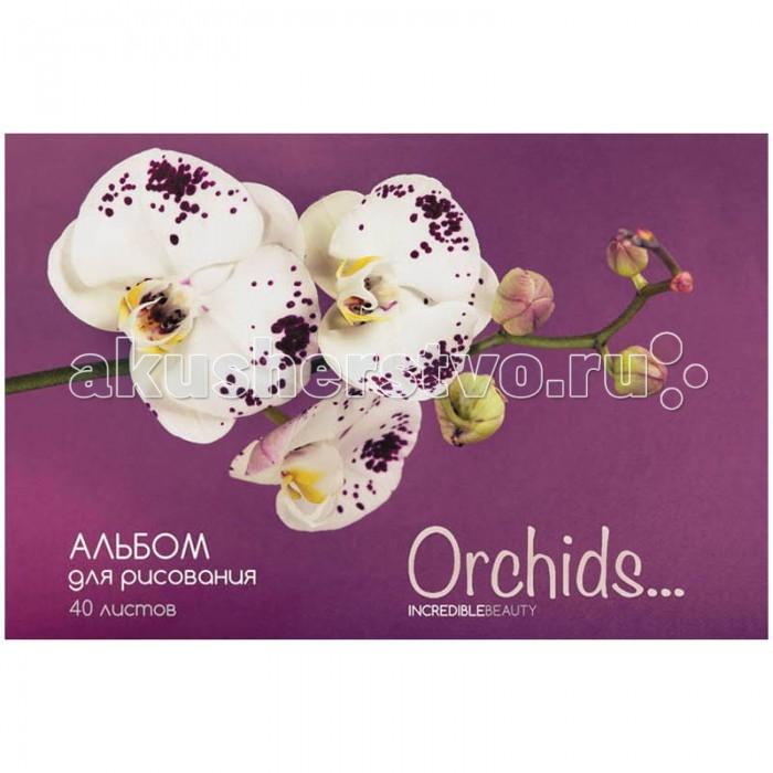 Спейс Альбом для рисования Цветы Орхидеи 40 листовАльбом для рисования Цветы Орхидеи 40 листовСпейс Альбом для рисования Цветы Орхидеи 40 листов формата А 4 на скрепке, в обложке из импортного мелованного картона.  Внутренний блок из 40 листов офсетной бумаги на скобе. Плотность бумаги — 100 г/кв.м. Соответствует техническому регламенту о безопасности продукции, предназначенной для детей и подростков. Предназначен для школьников и учащихся художественных школ.Изготовлен из высококачественных материалов, подходящих для рисования карандашом, фломастером, ручкой, тушью, пастелью или акварелью.  Товар сертифицирован:Д-RU.АБ05.В.04737<br>