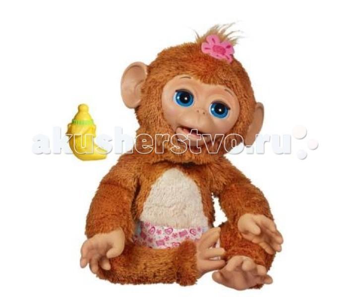 Интерактивная игрушка FurRealFriends Hasbro Смешливая обезьянкаHasbro Смешливая обезьянкаСмешливая обезьянка Hasbro  Обезьянка ведет себя почти как настоящая, она воспроизводит различные забавные звуки, моргает глазками, двигается и всегда по разному реагирует на Ваши прикосновения, например, если вы почешите ей животик, то она будет весело смеяться и двигаться. Когда обезьянка пьет водичку из своей любимой бутылочки она двигает губами. После кормления вашей малышки не забудьте поменять ей памперс.   Чтобы ваша озорная обезьянка уснула просто покачайте ее на ручках-обезьянка прикроет свои глазки и уснет, тихо посапывая.   В наборе: обезьянка, памперс и бутылочка в форме банана.   Высота обезьянки 35 см<br>