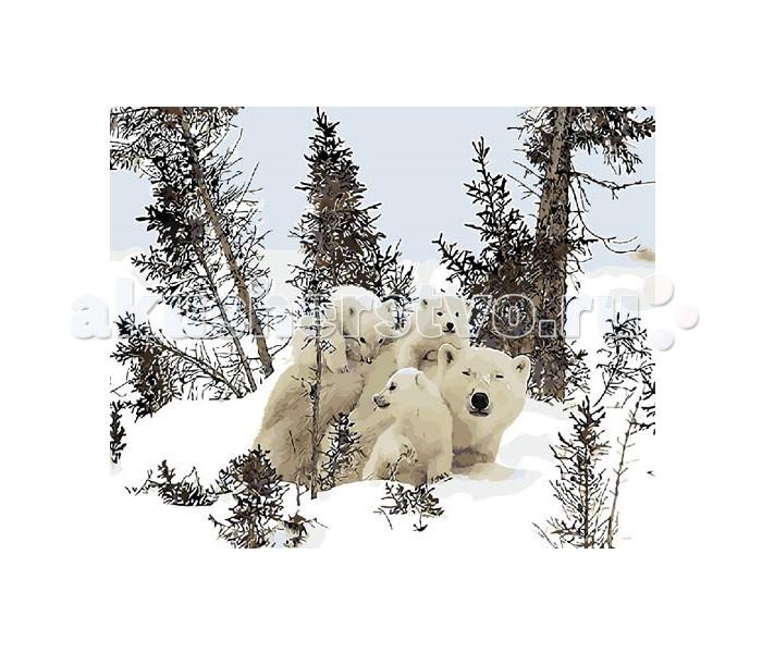 Molly Картина по номерам Белые медведиКартина по номерам Белые медведиMolly Картина по номерам Белые медведи GX8835  Картина по номерам - это интеллектуальное рисование. Просто взяв в руки краски и следуя нумерации на фрагментах картинки, Вы создаете оригинальный рисунок. Раскраска по номерам учит штриховать рисунки в заданных областях и раскрашивать их, не заходя за контур, концентрироваться на отдельных предметах, планировать свою деятельность.  Комплектация: - холст, сделанный из чистого хлопка на подрамнике; - набор акриловых красок, индивидуально разлитый для каждой картины; - набор кистей; - крепеж для подвешивания картины; - контрольный лист; - акриловый лак.  Размер: 40х50 см.<br>