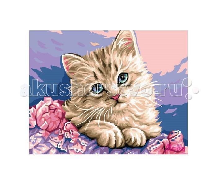 Molly Картина по номерам Милый котёнок