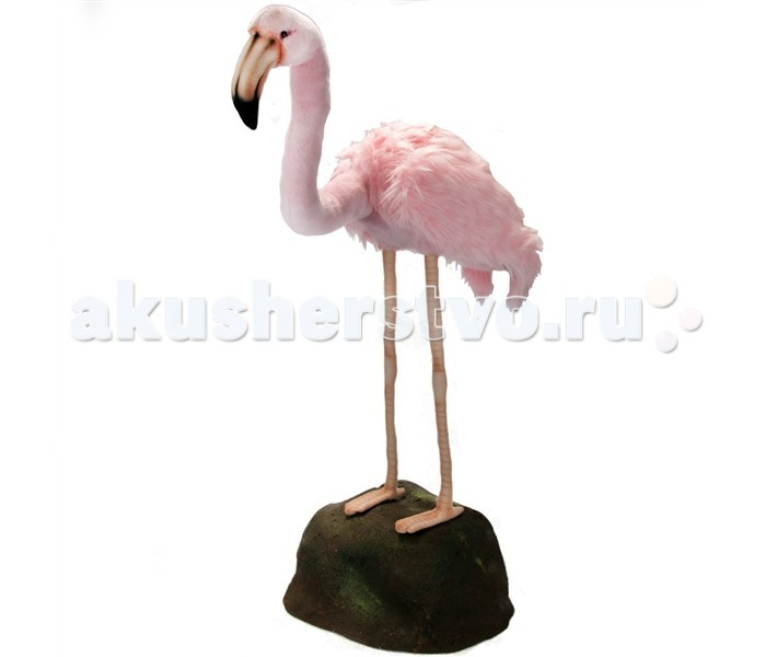 Мягкая игрушка Hansa Розовый фламинго 80 смРозовый фламинго 80 смHansa Розовый фламинго 80 см  Торговая марка Hansa стала широко известной и популярной практически во всем мире и получила множество международных призов Игрушки максимально точно копируют оригинал и могут быть выполнены в натуральную величину Шьются и набиваются вручную, что позволяет достигнуть максимальной реалистичности образа Изготавливаются из искусственного меха, специально обработанного для придания схожести с мехом конкретного вида животного Снабжены проволочным каркасом При помощи игрушек Hansa можно создавать различные интерьерные образы в детских, студиях и живых уголках.<br>