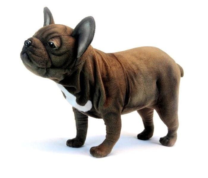 мягкая-игрушка-hansa-французский-бульдог-взрослый-50-см