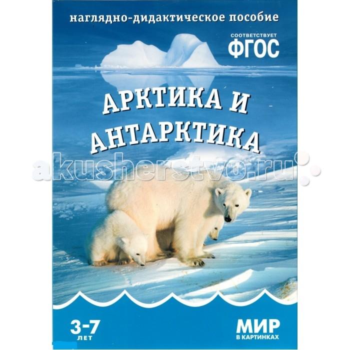 Мозаика-Синтез Мир в картинках. Арктика и Антарктика.