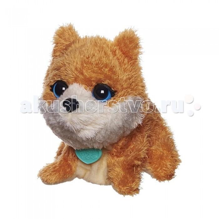 Интерактивная игрушка FurRealFriends Поющий щенокПоющий щенокИнтерактивная игрушка Hasbro FurReal Friends Поющий щенок   Особенности   Мягкий плюшевый щенок вместе с вашим ребенком сможет петь песенки.   Если нажать на игрушку, то поросенок будет издавать разные звуки.   У него приятные и очень выразительные пластиковые глаза.   Щенок может поворачивать голову.   На шее у него висит симпатичный кулончик в форме сердечка.    Для работы необходимы две батарейки типа LR44 (включены в комплект)  Длина 10 см<br>