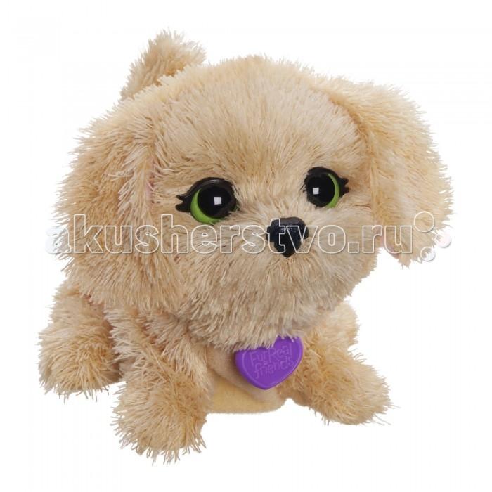 Интерактивная игрушка FurRealFriends Поющий щенок бежевый