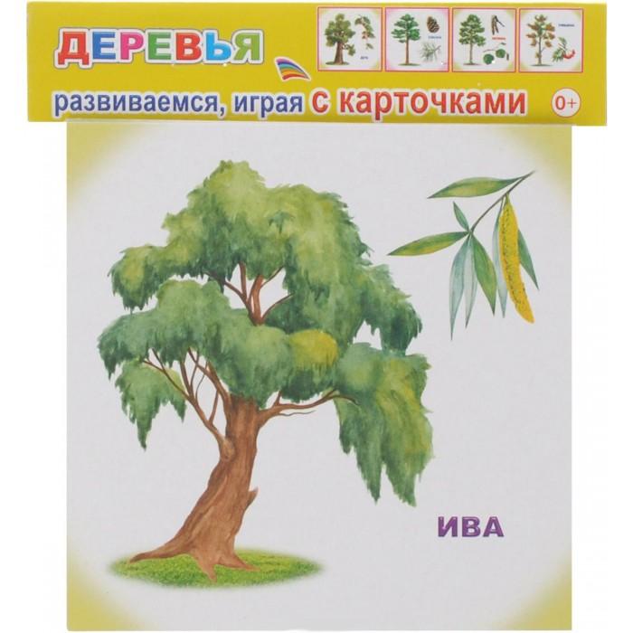 Алфея Обучающие карточки ДеревьяОбучающие карточки ДеревьяВашему вниманию предлагается набор развивающих карточек, которые познакомят вашего ребенка с окружающим миром, помогут развить фантазию и расширить кругозор.  Для детей дошкольного возраста.<br>