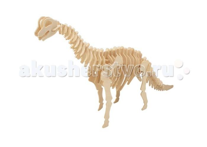 Конструктор МДИ Брахиозавр серия Ж 52 элементаБрахиозавр серия Ж 52 элементаМДИ Брахиозавр серия Ж 52 элемента Ж013                       Сборная деревянная модель Брахиозавр выполнена из дерева. Она увлечет не только ребенка, но и взрослого человека. Отличный способ приятно и с пользой провести время с ребенком. Один из плюсов этой модели - не нужно возиться с клеем, достаточно просто внимательно изучить инструкцию и все получится очень быстро. Все детали очень легко и плавно входят в свои пазы, больших усилий прилагать не надо. В инструкции подробно описаны и пронумерованы иллюстрированные детали. Возле каждого отверстия стоит номер детали, которую нужно в него вставить.<br>