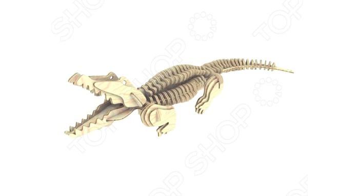 Конструктор МДИ Крокодил серия МКрокодил серия ММДИ Крокодил серия М М013                       Комплект позволяет собрать объемную фигурку одного из древних жителей нашей планеты - крокодила. Для того чтобы начать сборку, следует извлечь элементы из платы. Затем, пользуясь инструкцией, приступить к сборке. Сборка модели потребует от ребенка точности движений и внимания. Игрушка развивает пространственное воображение и усидчивость.  Чтобы Крокодил длительно сохранял свою первоначальную форму, можно покрыть модель столярным лаком.<br>