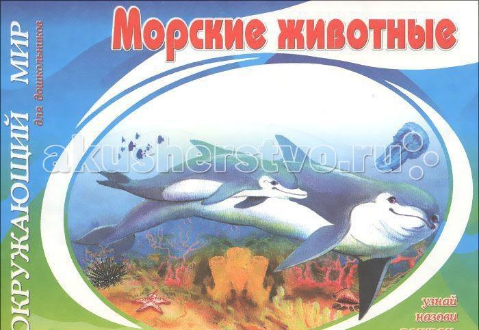 Раскраска ДетИздат Окружающий мир Морские животные