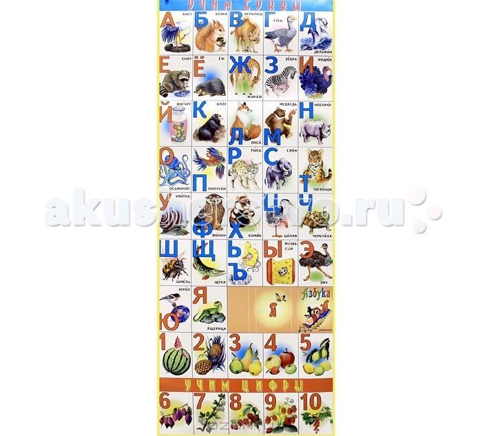 ДетИздат Разрезная Азбука с буквами и цифрами