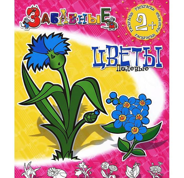 Раскраска ДетИздат Забавные полевые цветы