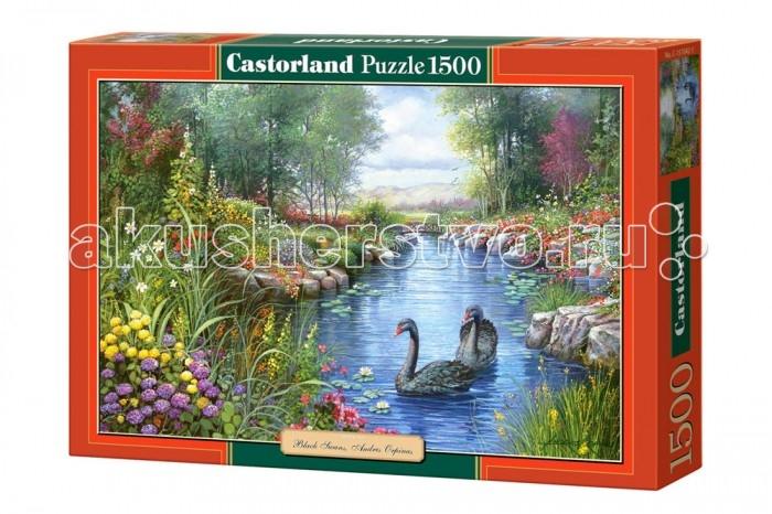 Castorland Пазл Черные лебеди 1500 элементовПазл Черные лебеди 1500 элементовБольшой пазл с красивой картинкой Черные лебеди марки Castorland станет прекрасным подарком и развлечением для всей семьи. Красивейшие грациозные птицы, плывущие по кристально-чистой реке, окруженной прелестными цветами и зеленой растительностью - что за умиротворяющее зрелище. Пазл состоит из 1500 деталек, идеально стыкующихся между собой, поэтому в итоге получится изображение, достойное стать роскошным предметом интерьера. Изобразил же этих удивительных птиц американский художник Андрес Орпинас. Будучи чилийцем по происхождению, он в юном возрасте приехал в США, чтобы попробовать свои силы в живописи. Достаточно быстро Андрес стал популярен в Америке, а вслед за тем пришла и мировая известность, и сегодня у вас есть возможность купить пазл Черные лебеди от компании Castorland, который представляет собой репродукцию одной из его картин.  Основные характеристики:   Размер упаковки: 35 x 5 x 25 см  Размер собранной картины: 68 х 47 см Количество элементов: 1500 шт.<br>