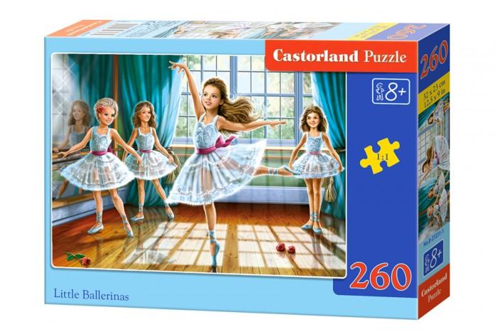 Castorland ���� ��������� �������� 260 ���������
