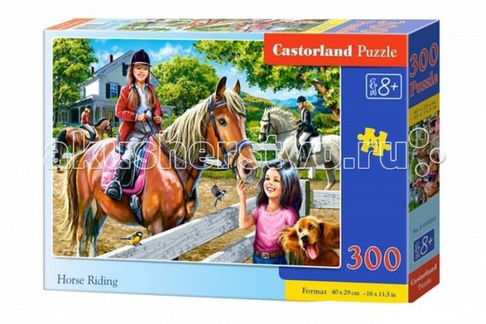 Castorland Пазл Верховая езда 300 элементовПазл Верховая езда 300 элементовПазл от компании Castorland Верховая езда представляет вашему вниманию милую картинку, нарисованную в приятных пастельных тонах. На картинке головоломки изображены наездницы, а также подружка одно из них, которая пришла вместе со своей собачкой посмотреть на показательное выступление грациозных лошадей и их хозяев. Пазл состоит из 300 элементов, изготовленных из качественного плотно спрессованного картона. Все детали имеют ровные края, поэтому легко соединяются друг с другом, образуя ровное полотно.  Основные характеристики:   Размер упаковки: 32 x 22 x 4.7 см Размер собранной картины: 40 х 29 см Количество элементов: 300 шт.<br>