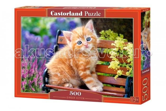 Castorland Пазл Рыжий котенок 500 элементовПазл Рыжий котенок 500 элементовПазлы от Castorland — это не только интересное, но и очень полезное для развития логики и мышления занятие. Пазл изготовлен из высококачественного картона и абсолютно безопасен для здоровья ребенка.  Основные характеристики:   Размер упаковки: 32.5 &#215; 22.5 &#215; 5  см  Размер собранной картины: 47 x 33 см Количество элементов: 500 шт.<br>