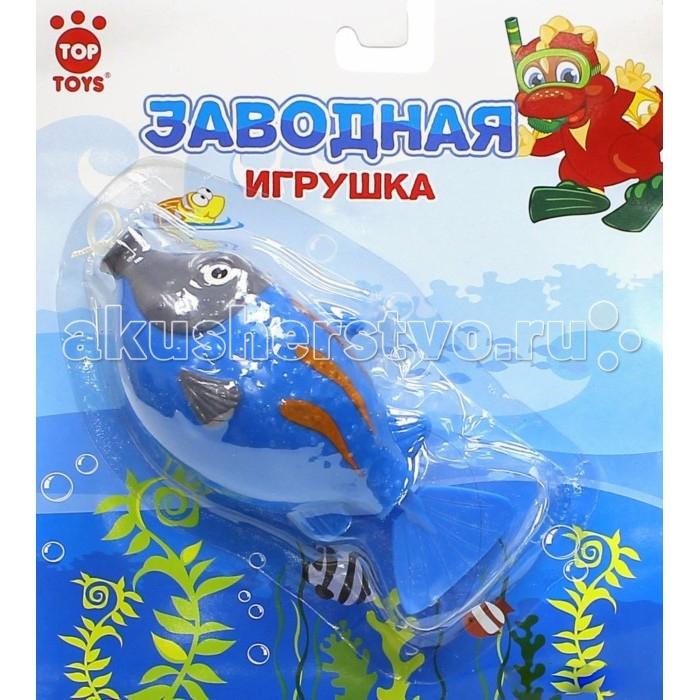 Top Toys Рыба GT8896 заводнаяРыба GT8896 заводнаяЗаводная игрушка для самых маленьких – очень яркая и красочная.   Теперь вашему малышу будет весело принимать водные процедуры – ведь эта игрушка умеет плавать по воде.   С этой игрушкой можно не только купаться, но и просто играть.   Порадуйте вашего малыша таким ярким подарком.<br>