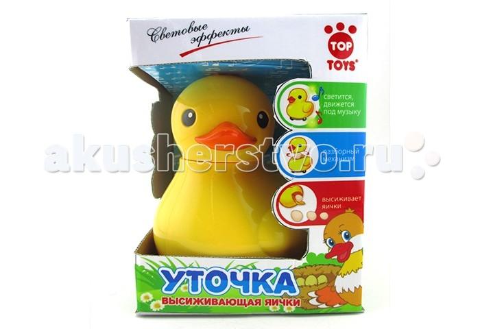 Top Toys Утка GT8880 с яйцами, со светом и звукомУтка GT8880 с яйцами, со светом и звукомВеселая утка понравится любому ребенку.   Эта игрушка на батарейках, она может передвигаться и нести яйца.   В комплект входят три яйца.   Также игрушка имеет световые и звуковые эффекты, которые сделают игру ярче и динамичнее.   Деловитая уточка двигаться по полу или столу и нести одно яйцо за другим, вызывая смех и положительные эмоции!   Ваш ребенок будет играть и говорить с игрушкой, развивая моторику и речь.<br>