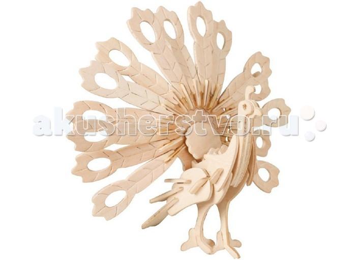Конструктор Wooden Toys Сборная модель ПавлинСборная модель ПавлинПавлин это сборная деревянная игрушка - 3D пазл в виде фигурки настоящей птицы.  Все вырубные детали располагаются на фанерной доске. Для сборки модели их необходимо предварительно выдавить с места расположения и собирать в последовательности, указанной в прилагаемой инструкции.  Для того чтобы собранная модель служила долго, можно проклеить места соединения деталей в процессе сборки.   При желании собранную модель можно раскрасить, используя любые типы краски. Производитель рекомендует темперные краски. После раскрашивания модель можно покрыть лаком.  В процессе сборки модели ребенок развивает усидчивость, пространственное и абстрактное мышление.   Детали сборной модели изготовлены из экологически чистой древесины.  Комплектация:  3 фанерных пластины с деталями и инструкция по сборке.<br>