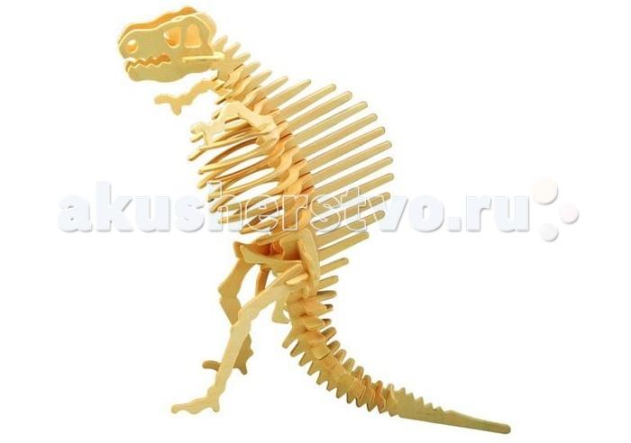 Конструктор Wooden Toys Сборная модель СпинозаврСборная модель СпинозаврСпинозавр это сборная деревянная игрушка - объемная модель настоящего древнего динозавра.  Все вырубные детали располагаются на фанерной доске. Для сборки модели их необходимо предварительно выдавить с места расположения и собирать в последовательности, указанной в прилагаемой инструкции.  Для того чтобы собранная модель служила долго, можно проклеить места соединения деталей при сборке.   При желании собранную модель можно раскрасить, используя любые типы краски. Производитель рекомендует темперные краски. После раскрашивания модель можно покрыть лаком.  В процессе сборки модели ребенок развивает усидчивость, пространственное и абстрактное мышление.   Все детали сборной модели изготовлены из экологически чистой древесины.  Комплектация:  3 фанерных пластины с деталями и инструкция по сборке.<br>