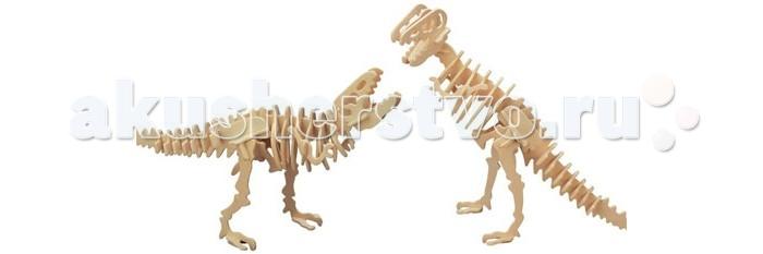 Конструктор Wooden Toys Сборная модель Тиранозавр 2 в 1Сборная модель Тиранозавр 2 в 1Тиранозавр 2 в 1 это сборная деревянная игрушка - две объемных модели настоящих древних динозавров.  Все вырубные детали располагаются на фанерной доске. Для сборки модели их необходимо предварительно выдавить с места расположения и собирать в последовательности, указанной в прилагаемой инструкции.  Для того чтобы собранная модель служила долго, можно проклеить места соединения деталей при сборке.   При желании собранную модель можно раскрасить, используя любые типы краски. Производитель рекомендует темперные краски. После раскрашивания модель можно покрыть лаком.  В процессе сборки модели ребенок развивает усидчивость, пространственное и абстрактное мышление.   Все детали сборной модели изготовлены из экологически чистой древесины.  Комплектация:  4 фанерных пластины с деталями и инструкция по сборке.<br>