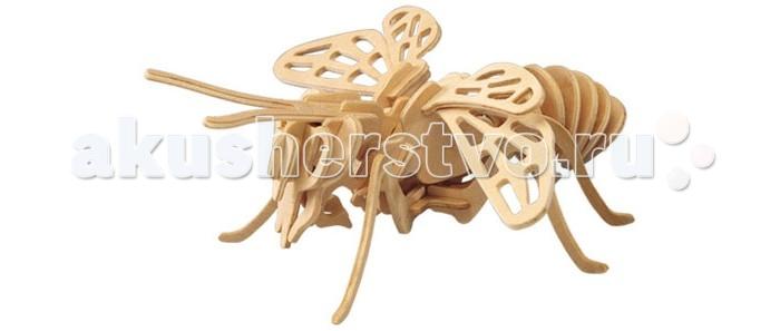 Конструктор Wooden Toys Сборная модель Шмель малыйСборная модель Шмель малыйШмель малый это сборная деревянная игрушка - объемная модель настоящего шмеля.  Все вырубные детали располагаются на фанерной доске. Для сборки модели их необходимо предварительно выдавить с места расположения и собирать в последовательности, указанной в прилагаемой инструкции.  Для того чтобы собранная модель служила долго, можно проклеить места соединения деталей при сборке.   При желании собранную модель можно раскрасить, используя любые типы краски. Производитель рекомендует темперные краски. После раскрашивания модель можно покрыть лаком.  В процессе сборки модели ребенок развивает усидчивость, пространственное и абстрактное мышление.   Все детали сборной модели изготовлены из экологически чистой древесины.  Комплектация:  2 фанерных пластины с деталями и инструкция по сборке.<br>