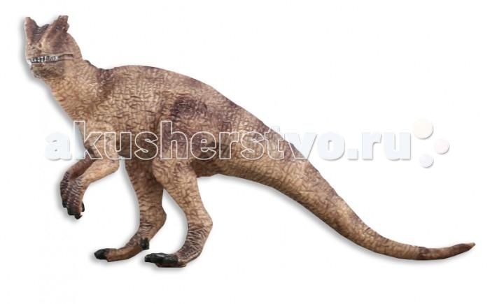 Dinosaur Family Динозавр ДилофозаврДинозавр ДилофозаврDinosaur Family Динозавр Дилофозавр - это хищный динозавр. Его острые и загнутые, как у аллозавра, зубы были очень опасным оружием, а главным отличием от других динозавров было наличие 2х костяных гребней на голове. Благодаря своей не очень большой массе тела, он был очень подвижен, мог развивать не малую скорость бега (50-55км/ч) и без проблем перепрыгивать различные препятствия на пути к жертве.  Реалистичная фигурка изготовлена из высококачественного пластика.   Размер: 14 х 9 х 5 см<br>