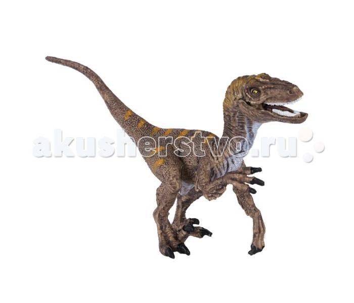 Dinosaur Family Динозавр ВелоцирапторДинозавр ВелоцирапторДинозавр Dinosaur Family Велоцираптор - мелкий хищник мелового периода. Особую известность получил благодаря х/ф Парк юрского периода. Велоцираптор был прирожденным бегуном. Из засады он стремительно бросался на жертву. Животные, на которых нападал велоцираптор, почти не имели шансов на спасение. Сегодня основной спор вокруг велоцираптора идет о том, как он выглядел. Этого динозавра когда-то изображали с зеленой кожей рептилии, но в последнее время в моде изображать его с примитивными, пушистыми, яркими цветными перьями.  Реалистичная фигурка изготовлена из высококачественного пластика.   Размер: 16 х 8.5 см<br>