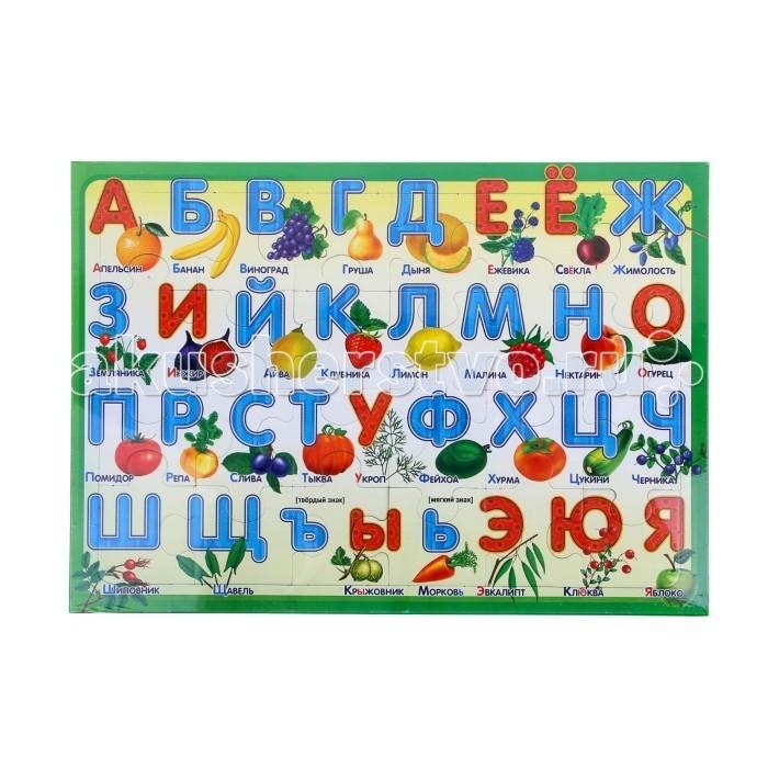 Русский стиль Пазл в рамке Алфавит Дары природы 24 элемента