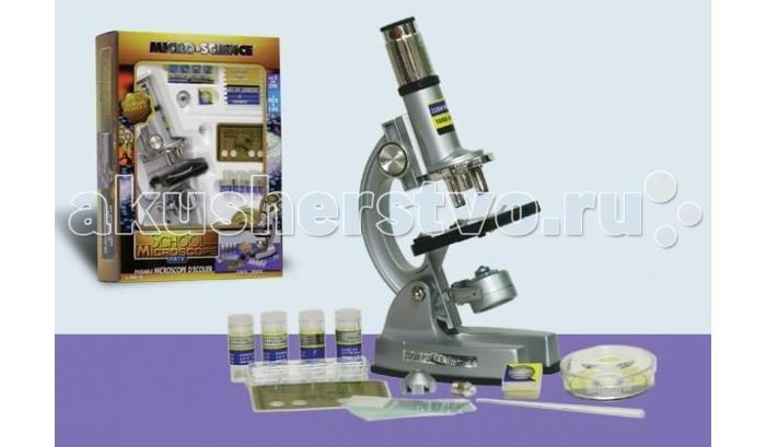 Eastcolight Микроскоп учебный 48 предметовМикроскоп учебный 48 предметовEastcolight Микроскоп учебный 48 предметов  Увеличивающий микроскоп - лучший подарок для вашего юного ученого. Микроскоп способен увеличивать в 100, 450 и 900 раз.  Комплект микроскопа состоит из: микроскоп, 1 микроинкубатор, 1 банк данных микронауки, 12 образцов, 12 предметных стёкол, 12 подписанных этикеток, 4 пузырька для химических реактивов, 1 чашка Петри, 1 прижимающий держатель, 1 крышка объектива, 1 запасная лампочки, инструкция по приготовлению объектов исследования.  Он очень удобен в применении, во время серьезной работы ваш малыш сможет подсветить свой объект для лучшего исследования.  Возраст: от 8 лет  Комплект: компактный микроскоп, аксессуары (48 предметов). Наличие батареек: не входят в комплект.  Тип батареек: 2 х AA / LR6 1.5V (пальчиковые). Размер игрушки: высота микроскопа - 22 см.<br>