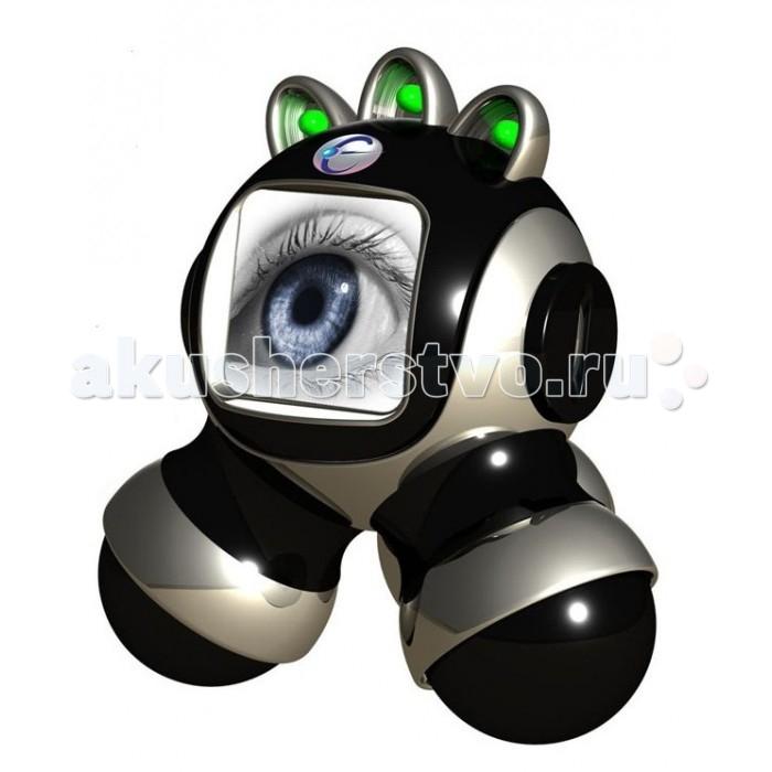 Eastcolight Набор СупершпионНабор СупершпионEastcolight Набор Супершпион не даст скучать ребенку, ведь это устройство всегда начеку, оно следит за происходящим и информирует о приближении объекта. Игрушка оригинальной формы, напоминает робота. Устройство оснащено микрофоном, диктофоном и датчиком движения. Оно может записывать звуки голоса, мелодии, а затем их воспроизводить. Воспроизведение срабатывает, когда датчики движения улавливают перемещение ребенка или взрослого по комнате в радиусе до 2 метров. Супершпион питается электроэнергией от компьютера через USB кабель, входящий в комплект. На передней панели игрушки размещена фоторамка, в которую можно поместить любое изображение. Одновременно со звуковыми эффектами срабатывают световые сигналы.   Возраст: от 8 лет Комплект: диктофон, микрофон, датчик движения, фоторамка, датчик света, USB-кабель. Дальность действия: 2 м. Питание: через USB-кабель.<br>
