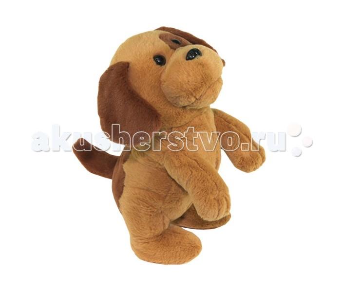 Мягкая игрушка Ваш подарок Поющая Ласковый щенокПоющая Ласковый щенокВаш подарок Интерактивная игрушка Поющая Ласковый щенок - это замечательная маленькая собачка, которая двигается на задних лапках и танцует под замечательную детскую песенку «Маленький щенок». «Ласковый щенок» будет неповторимым подарком как для детей, так и для взрослых. Во время исполнения щенок синхронно словам песни открывает рот и наклоняется вперед. Игрушка работает от 3 батареек АА.<br>