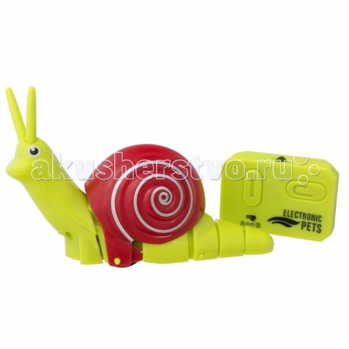 Интерактивная игрушка JoyD робот Улитка скоростная