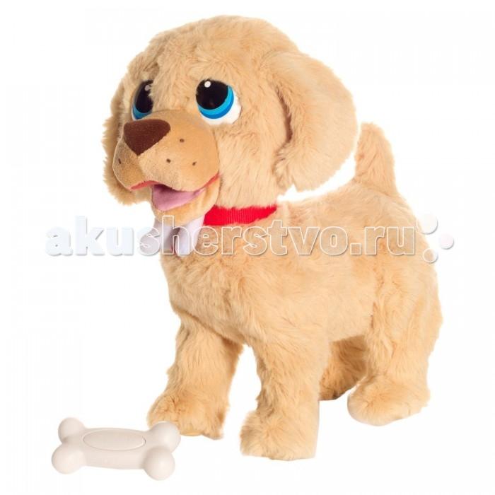 Интерактивная игрушка Giochi Preziosi Собака ГолдиСобака ГолдиИнтерактивная игрушка Giochi Preziosi Собака Голди в точности копирует породистого щенка - золотистого ретривера.   Этот малыш не хуже взрослой собаки может охранять своего хозяина - если он почувствует, что кто-то подходит, отрывисто залает.   К тому же, этот удивительный милый щеночек выполняет разные команды, которые хозяин подает с радиоуправляемой косточки. Прицепите поводок, нажимайте на пульт - и Голди последует туда, куда вы захотите. Он весело шевелит головой, ушами и очень забавно лает! И не забывайте гладить собачку - ее радостная реакция не заставит ждать!   В комплекте:    интерактивная собака Голди  косточка для управления  инструкция   Тип батареек: 3 x C/LR14 1.5V - малые бочонки (не входят в комплект)<br>