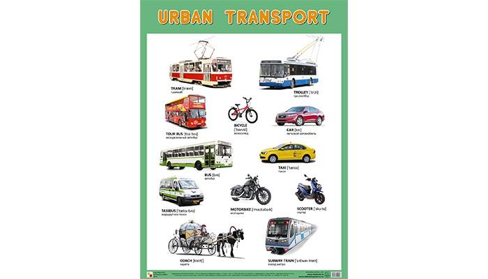 Мозаика-Синтез Обучающий плакат URBAN TRANSPORT Городской транспортОбучающий плакат URBAN TRANSPORT Городской транспортПлакат большого формата URBAN TRANSPORT поможет детям в изучении английского языка. С его помощью они легко освоят новые слова по теме Городской транспорт и запомнят названия различных видов городского транспорта: автобус, троллейбус, велосипед и др. К каждому названию дана транскрипция.  Основные характеристики:   Размер: 590 х 440 х 0,1 мм Вес: 0,075 кг<br>