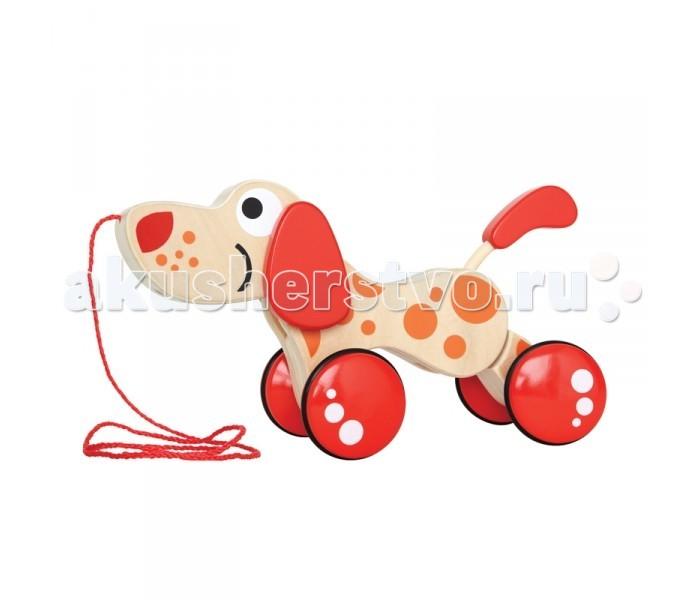 Каталка-игрушка Hape Каталка Щенок Е0347