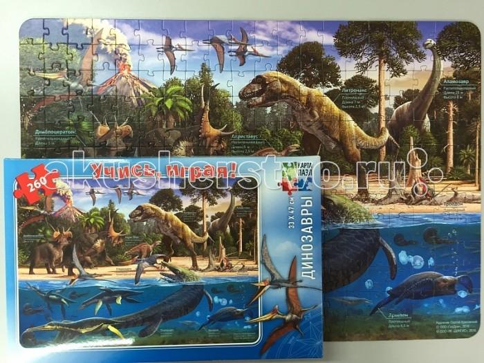 Геодом Карта-пазл Динозавры 260 деталейКарта-пазл Динозавры 260 деталейГеодом Карта-пазл Динозавры 260 деталей  Карта-пазл Динозавры из серии Учись играя, от производителя Геодом, развивающая игрушка для детей, вне зависимости от пола. Карта-пазл содержит 260 небольших картонных элементов, поэтому не рекомендуется для игры детям младше 3-х лет.   Благодаря этой игре дети  узнают много нового о видах динозавров и их жизни в доисторический период.<br>