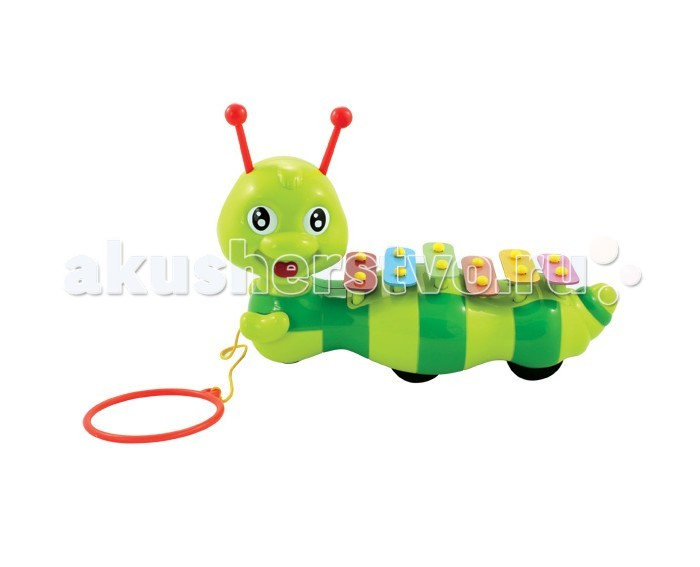 Каталка-игрушка Fun For Kids ксилофон Гусеницаксилофон ГусеницаКаталка-игрушка Fun For Kids Ксилофон Гусеница выполненная в виде зеленой полосатой гусеницы, на спине которой расположен самый настоящий ксилофон. При движении гусеницы пластинки ксилофона поочередно поднимаются и опускаются. При желании ребенок может поиграть на ксилофоне, вытащив рожки гусеницы.<br>