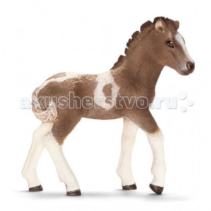 Schleich Игровая фигурка Испанский пони жеребенокИгровая фигурка Испанский пони жеребенокИсландских пони - добродушные лошади для верховой езды, на них можно ездить даже взрослым. Полного роста эти пони достигают в 7 лет, средняя продолжительность жизни 35 лет.   В серии Домашние животные представлены все животные, которые окружают нас дома или на даче. С помощью отдельных элементов можно создавать целые фермы.  Очень широко представлена коллекция лошадей. Все фигурки выполнены из высококачественных материалов с максимальной точностью и раскрашены в ручную. Не вызывает аллергии. Великолепно выполненные и раскрашенные вручную животные, созданные при тесном сотрудничестве с Берлинским зоопарком, никого не оставят равнодушными. В разработке каждой фигурки компания Schleich опирается на исследования в области педагогики, создавая маленькие произведения для маленьких ручек.<br>
