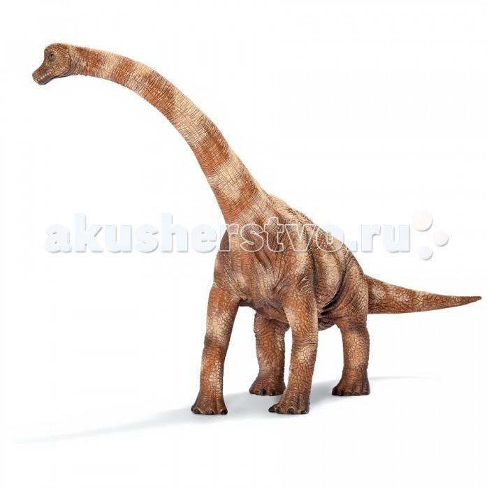 Schleich Игровая фигурка Брахиозавр ДинозаврыИгровая фигурка Брахиозавр ДинозаврыБрахиозавр – травоядный динозавр, с высотой от земли до плеч 6 метров и шеей длиной 9 м, мог дотянуться до верхушки деревьев. Острое обоняние и мощные зубы никогда не оставляли брахиозавра голодным. Брахиозавр – доисторическое животное, которое могло достигать 17 м в высоту и весить около 900 тонн.  Все фигурки животных Schleich выполнены из высококачественных материалов с максимальной точностью и раскрашены вручную. Не вызывают аллергии.  Основные характеристики:  Размер упаковки: 27,5 х 18 х 21 см Размер фигурки: 27,5 х 18 х 21 см<br>