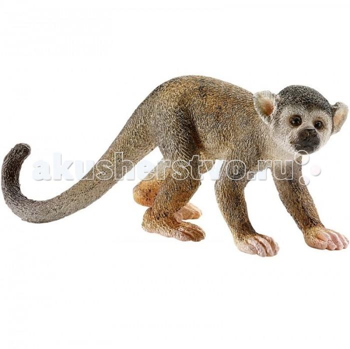 Schleich Игровая фигурка СаймириИгровая фигурка СаймириФигурка редкой обезьянки Саймири с длинным хвостом и светлой мордочкой непременно понравится каждому малышу и разнообразит его игры с фигурками животных.  Саймири – небольшие обезьянки, обитающие в лесах бассейна Амазонки. Тело ее покрыто густым коротким мехом, цвет которого может изменяться в зависимости от времени года.   Все фигурки Schleich сделаны из гипоаллергенных высокотехнологичных материалов, раскрашены вручную и не вызывают аллергии у ребенка.  Прекрасно выполненные фигурки Шляйх отличаются высочайшим качеством игрушек ручной работы. Все они создаются при постоянном сотрудничестве с Берлинским зоопарком, а потому, являются максимально точной копией настоящих животных. Каждая фигурка разработана с учетом исследований в области педагогики и производится как настоящее произведение для маленьких детских ручек.  Основные характеристики:  Размер фигурки: 2,5 x 6,6 x 2,5 см Вес: 9 г<br>