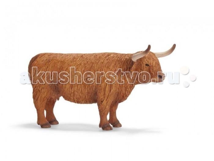 Schleich Игровая фигурка Северо-шотландская короваИгровая фигурка Северо-шотландская короваФигурка северошотландской коровы изготовлена из материалов высокого качества, а кроме того еще и раскрашена вручную. Работа над игрушкой шла при тесном сотрудничестве с берлинским зоопарком, именно поэтому она детально передает внешность настоящей особи, несмотря на то, что игрушка с легкостью поместится на руке.   Шотландская порода коров была выведена для суровых условий выживания, что не могло не повлиять на внешность самого животного. У этих коров густой мех, тёплый подшерсток и большие, острые рога. В такой униформе му-му не замерзнет даже в лютые морозы, да к тому же сумеет постоять за себя – в одном из шотландских музеев хранится чучело медведя, которого насмерть забодала северошотландской буренка. Следует также сказать, что особи этой породы весьма непривередливы в еде – могут есть одни грубые кустарники и травы.  Развлечение с фигурками от Schleich предоставит ребенку множество разнообразных и заманчивых игровых возможностей, поможет побольше узнать о представителях животного мира.<br>